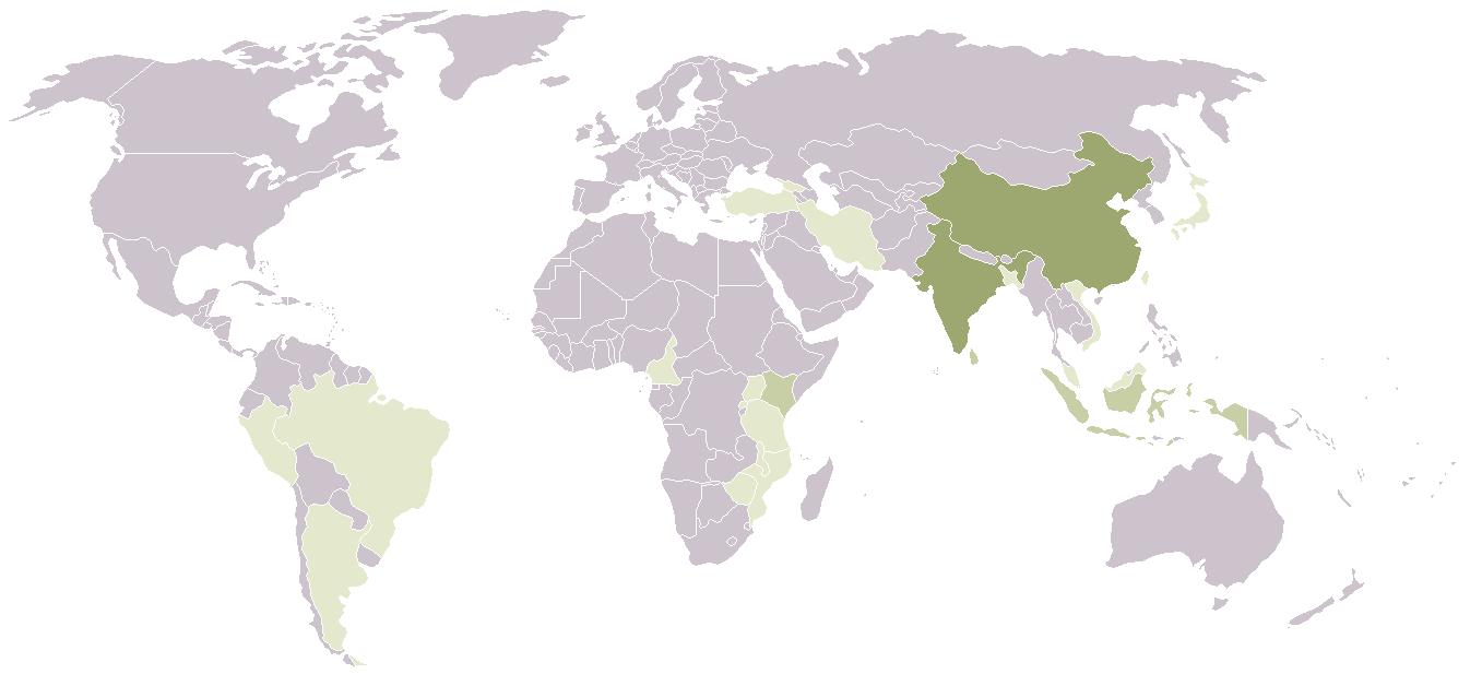 Carte de production du thé dans le monde