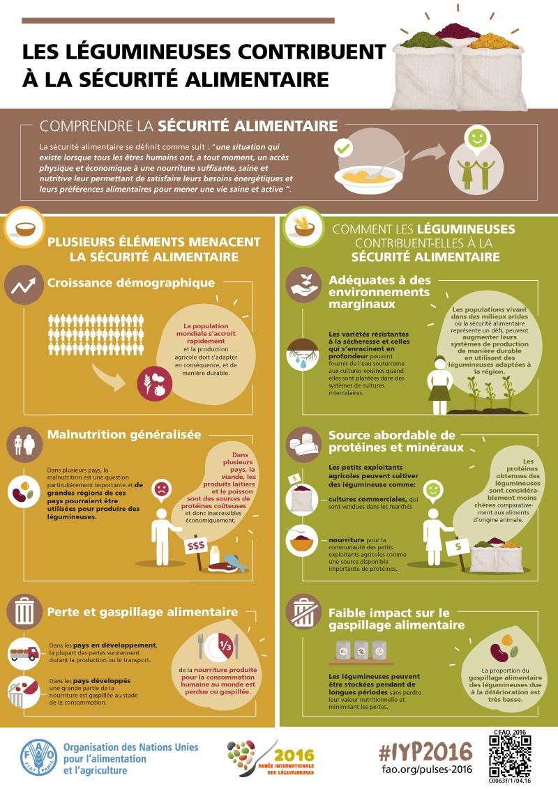 Les légumineuses contribuent à la sécurité alimentaire
