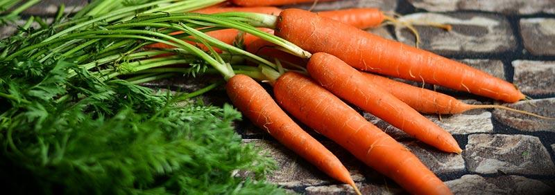 Photographie en gros plan d'une botte de carottes, qui font partie des aliments riches en fibres alimentaires.