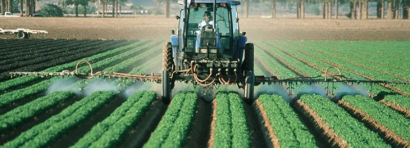 Photographie d'un agriculteur dans son tracteur, en train de répandre des pesticides et des insecticides sur sa production maraîchère.