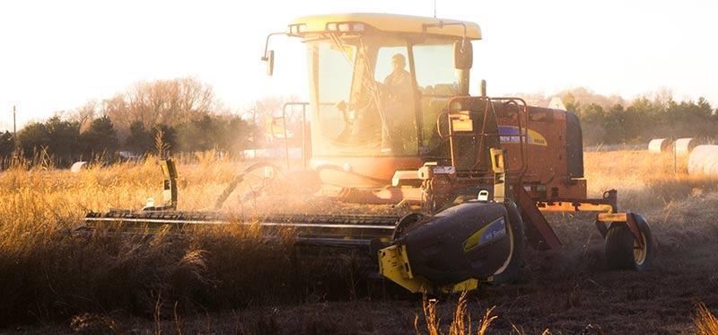 Photographie à contre-jour d'une moisonneuse-batteuse d'un agriculteur biologique produisant des aliments bio dans sa ferme.