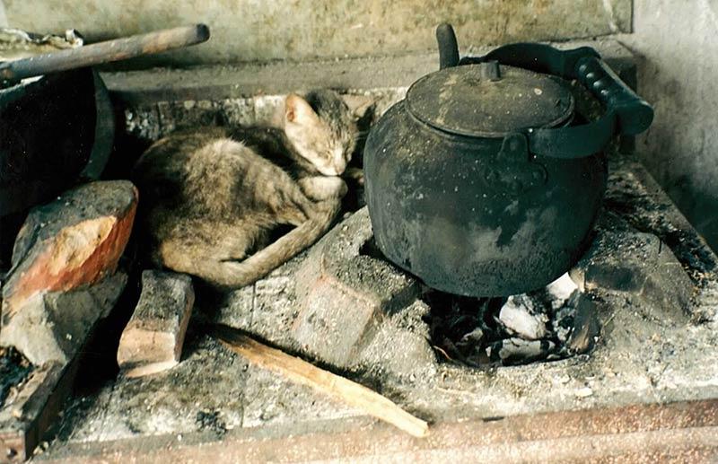 Photographie d'un chat gris en train de dormir en boule sur un réchaud en pierre en Thaïlande à côté des braises du feu de bois sur lequel repose une théière en fonte.