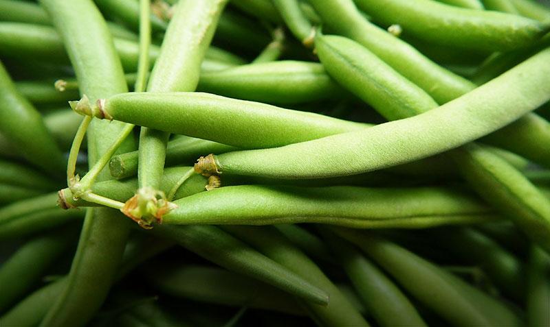 Comment congeler ou cuire des haricots verts frais ?