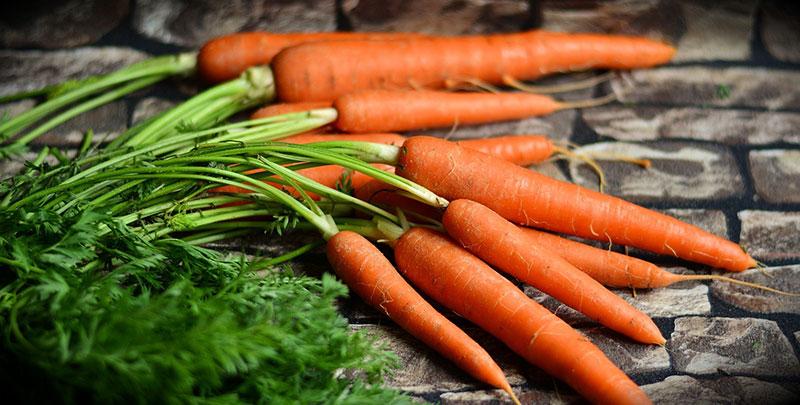 Comment conserver les carottes pour éviter qu'elles deviennent molles ?