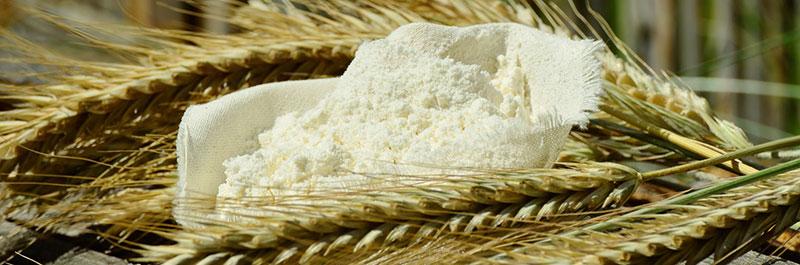 Farine de blé, d'orge, d'épeautre